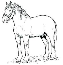 Horse Head Coloring Pages Elegant Of Horses Print