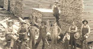 sawmill c 1930 urinetown research pinterest