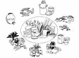 rice wheat and other main foods inside a circle of helper foods