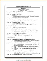 Modern Project Based Resume Example 8 Skills Based Resume Template ... Download Free Resume Templates Singapore Style 010 Professional Template Examples Example Inspirational Electrical Engineer Writing Tips Genius Stylist And Luxury Simple Layout 10 Basic Blank 2019 Pdf And Word Downloads Guides Sample Key Account Manager New Resume Format For Fresh Graduates Onepage 003 Ideas Skills Based Customer Service Representative Samples Data Entry Sample A Classic Computer List For Rumes Functional Complete Guide