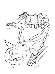 Reptile Amphibian Coloring Pages To Print Out Triceratops Head Page Source Nevada State Full Size