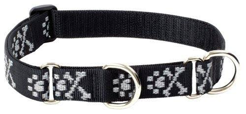 "Lupine Martingale Large Dog Collar - 1"" x 19""-27"""