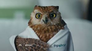 Trip Advisor TV Commercial A Price That Fits