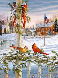 Leanin Tree Christmas Cards Canada by Christmas Cardinals Sam Timm Scenery U0026 Art Pics Pinterest