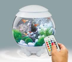 aquarium adoptez ou relogez un animal dans longueuil rive sud