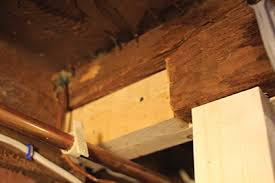 Installing Ceiling Joist Hangers by Fixing A Damaged Floor Joist Extreme How To