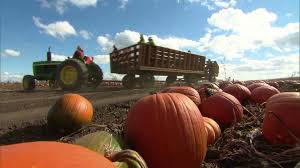 Pumpkin Patch Tulsa 2014 by Visit Richmond Area Farms With The 2016 Pumpkin Patch Guide Wtvr Com