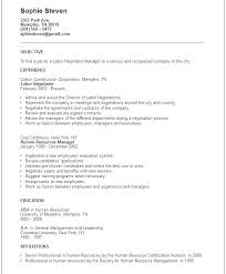 Construction Resume Objective Examples Example Of General Labor