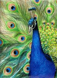 Color Pencil Drawing Ideas Colored Art Easy
