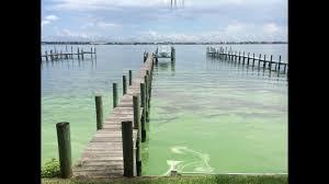 Bathtub Beach Stuart Fl Beach Cam by Blue Green Algae Spotted At Bathtub Reef Beach In Martin County