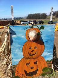 Peter Pumpkin Patch Petaluma by Kim U0027s Kitchen Sink 10 1 11 11 1 11