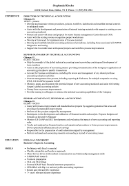 Download Technical Accounting Resume Sample As Image File