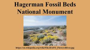 Hagerman Fossil Beds National Monument by Hagerman Fossil Beds National Monument Youtube