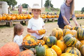 Pumpkin Patches In Arkansas by Ay Mag Ay Is About You It U0027s U201cpumpkin Time U201d In The Arkansas Delta