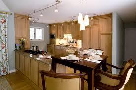 kitchen track lighting ideas for interior design in conjuntion