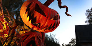 Best Halloween Attractions by 100 322 Best Halloween Costume Ideas Images On Pinterest Martha