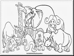 Fantastic Zoo Animals Coloring Pages With Animal Color And For Adults