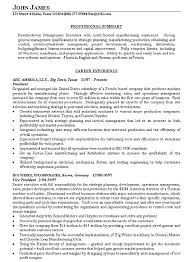 Summaries For Resumes Resume Overview Examples Career Summary Cool Of