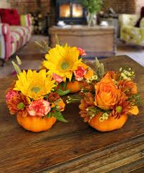 Larkspur Pumpkin Patch by Breens Florist Page 9 Of 13 Delivering Flowers In The Houston