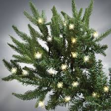 Slim Pre Lit Christmas Trees by The World U0027s Best Prelit Fraser Fir 7 5 U0027 Slim Led Hammacher