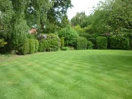 100 The Lawns A Beautiful Lawn Maintained By Lawn Man And