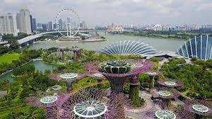 Aerial view of The Supertree Grove at Gardens by the Bay in