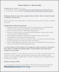 Entry Level Resume Summary From Beste Drachenfarbblatt Bilder Dokumentationsvorlage Beispiel Ideen