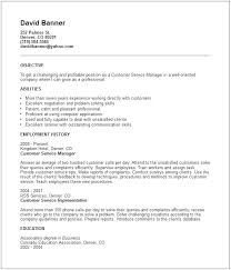 Customer Service Objective For Resume Sample Of