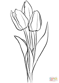 Click The Three Tulips Coloring Pages To View Printable