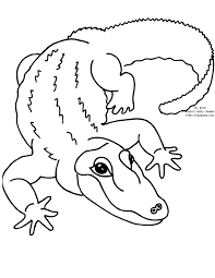 Coloring Page Zoo Animals 83