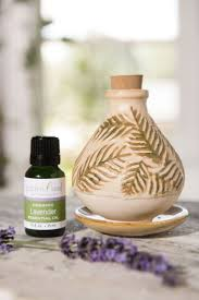 Lampe Berger Car Diffuser Instructions by The 25 Best Lavender Diffuser Ideas On Pinterest Migraine