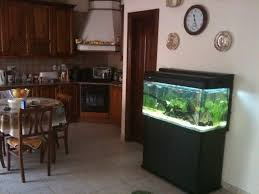 Best Fish Tank Living Room Design Ideas Amazing Simple Of With In ... Creative Cheap Aquarium Decoration Ideas Home Design Planning Top Best Fish Tank Living Room Amazing Simple Of With In 30 Youtube Ding Table Renovation Beautiful Gallery Interior Feng Shui New Custom Bespoke Designer Tanks 40 2016 Emejing Good Coffee Tables For Making The Mural Wonderful Murals Walls Pics Photos