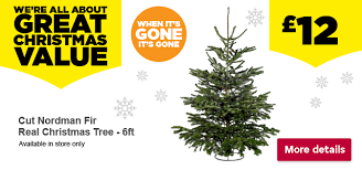 Nordic Fir Artificial Christmas Tree 6ft by Homebase Take A Real Tree Home This Christmas Milled