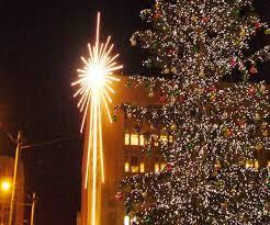 Christmas Tree Seedlings Wholesale by Christmas Tree Seedlings Sale Christmas Lights Decoration