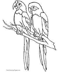 Dazzling Design Ideas Coloring Page Birds Color Pages Of Az Colouring Sheets