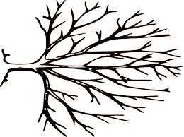 Pin Falling Clipart Bare Fall Tree 1