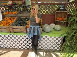Pumpkin Patch Miami Lakes by October Love Story The Fairy Princess Diaries