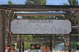 Oak Glen Pumpkin Patch Address by Live Oak Canyon Pumpkin Patch In Yucaipa California Through My Lens