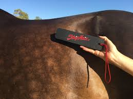 Best Horse Shedding Blade by Striphair The Gentle Groomer Is Betty U0027s Best Horse And Pet Care
