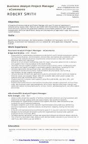 Example Resume Project Manager Business Analyst Samples Of 12
