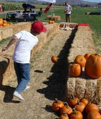 Big Orange Pumpkin Patch Celina Texas by 23 Best Photo Ops Images On Pinterest Fall Photo Booth Gardens