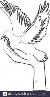 hand holding dove flying international day of peace Stock Image
