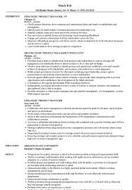 Strategic Project Manager Resume Samples Velvet Jobs ... Executive Resume Examples Writing Tips Ceo Cio Cto College Cover Letter Example Template Sample Of For Resume Experience Sample Caknekaptbandco A With No Work Experience Awesome Project Manager Full Guide 12 Word Cv The Best Samples For 2019 Studentjob Uk Free Professional And Customer Service Receptionist Monstercom Document Examples High School Students Little Management