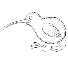Kiwi Bird Cute Coloring Pages PagesFull Size Image