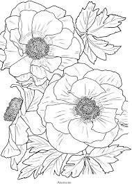 Welcome To Dover Publications Flowers Anemone