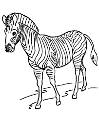 Zoo Animal Coloring Page