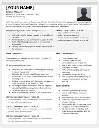 Finance Manager Resume Templates For MS Word