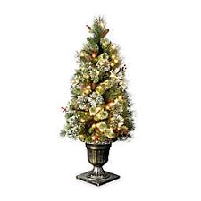 National Tree Company 4 Foot Wintry Pine Pre Lit Entrance With Clear Lights