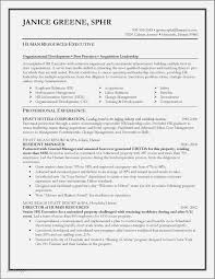 Military Experience On Resume Example Luxury Awesome Sample Jpg 1343x1738