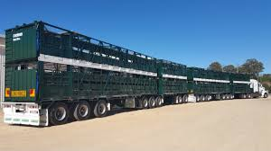 Cannon Trailers Livestock Cattle Trailer Manufacturers Makers Of ... Road Trains Australias Huge Trucks Youtube Scania Takes On Super Quads Group Kenworth Kenworth Australia Australian Train Truck Editorial Image Of Kangaroo Realistic Model Manspace Magazine Huge Semi Truck Kunnura East Kimberley 12001 Livestock Highway Replicas Roadtrain The Week The Bitch And Her Sisters